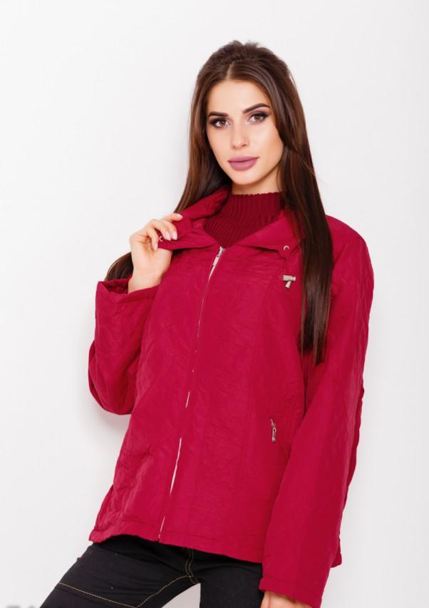 Куртки ISSA PLUS 7491  L бордовый от Issaplus